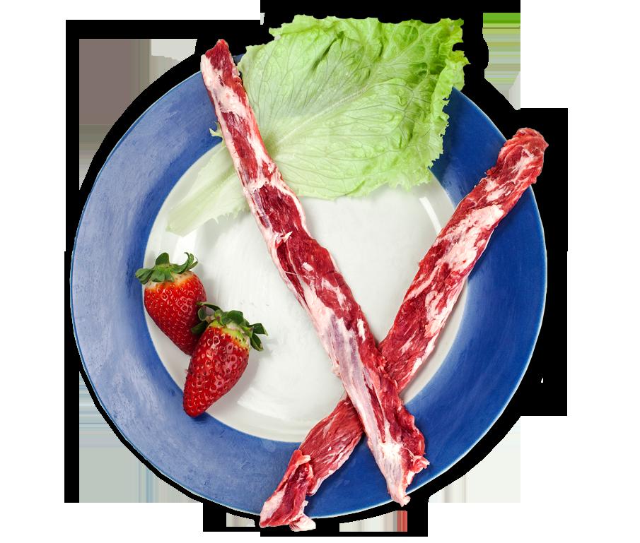sierra-de-codex-carnes-frescas-latigo-plato-con-sombra